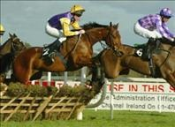 Aintree Horse Racing  Package