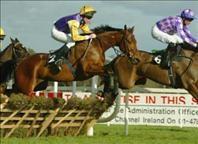 Aintree Horse Racing Package