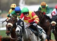 Cheltenham Horse Racing Package