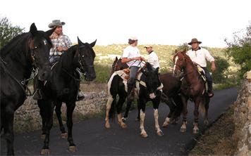 Horse Riding – Dublin