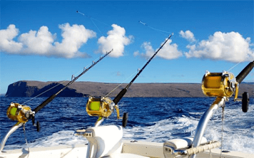 Sea Fishing – Newquay