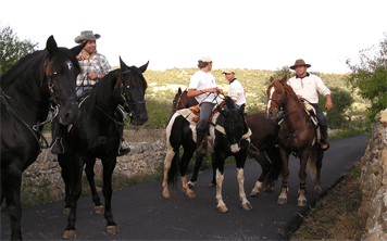 Horse Riding – Valencia