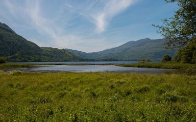 Walking Tour to Killarney's Top Attractions - Stagit.ie